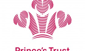 Week 7 – Fundraising Executive – The Prince's Trust