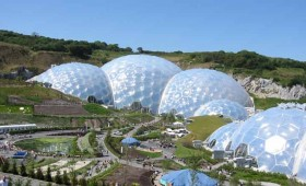 Week 28 – Horticulturalist – Eden Project